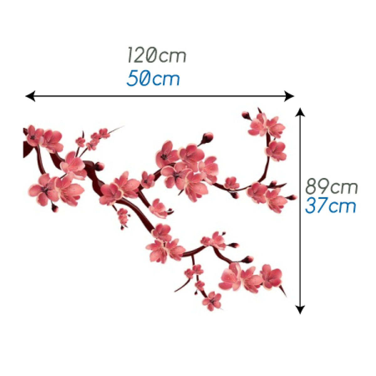 Blossoming Sakura