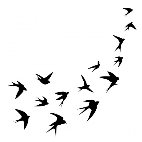 A Flock Of Swallows