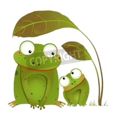 Mama And Baby Frog