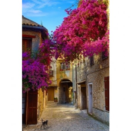 Old Town Of Provence