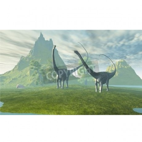 Two Diplodocus dinosaurs walk together in the afternoon in the prehistoric age